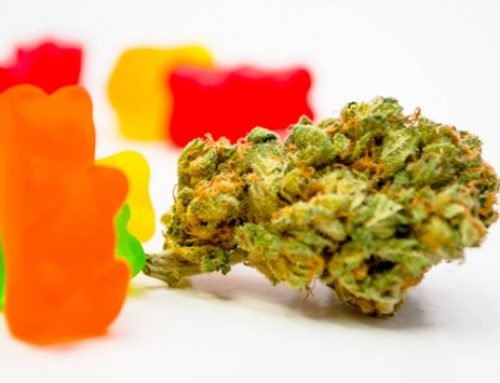 CBD Gummies for Anxiety and Depression